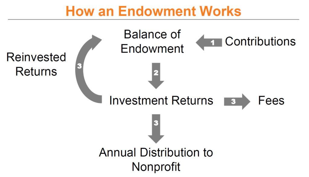 endowment infographic